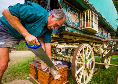 BOOMTOWN FAIR 2015 - LEORA BERMEISTER - Whistler's Green